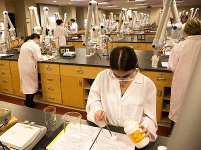 Experiments And Laboratory Assignments Online College